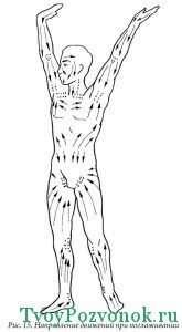 Круговые вращения руками