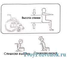 Подобрать высоту спинки коляски