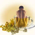 Как чай влияет на позвоночник