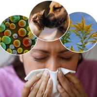 Аллергены