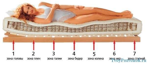 Зоны тела при выборе матраса