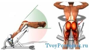 Какие мышцы прокачиваются при упражнении
