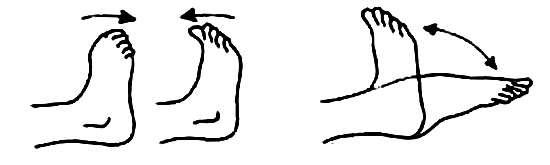 Гимнастика для голеностопа